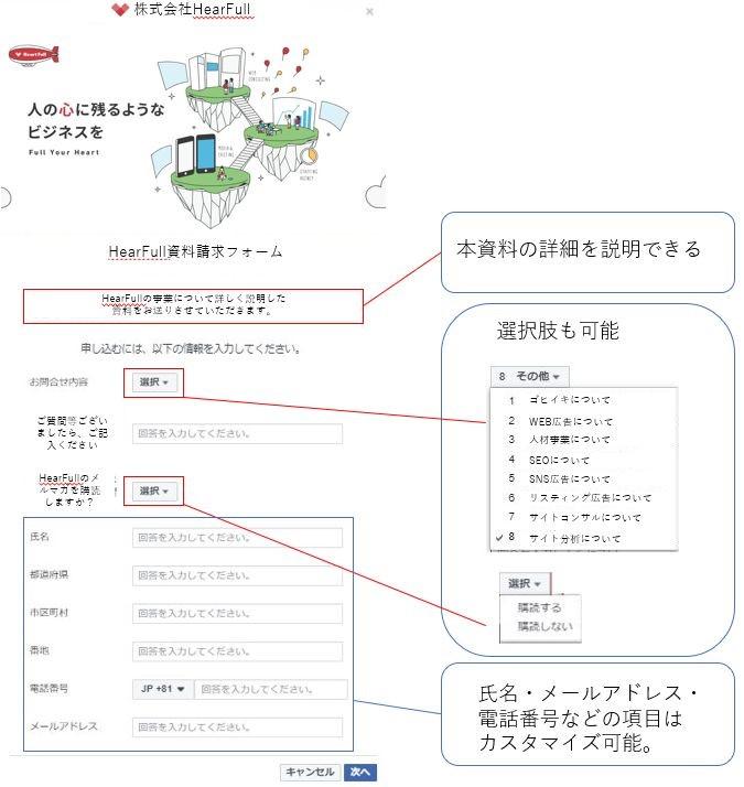 リード獲得広告の申し込みフォームカスタマイズ例
